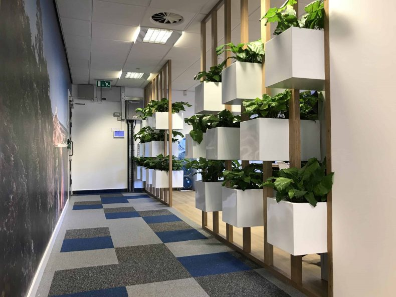 Planting Feature Wall in Bristol for Pegasus Group